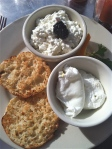 Jan 15- Eggs, Cottage Cheese & English Muffin (Claire's on Cedros)
