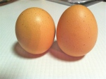 Feb 8- Hardboiled Eggs